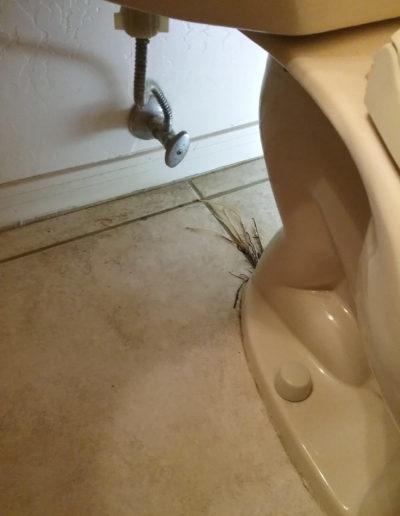 Toilet water line